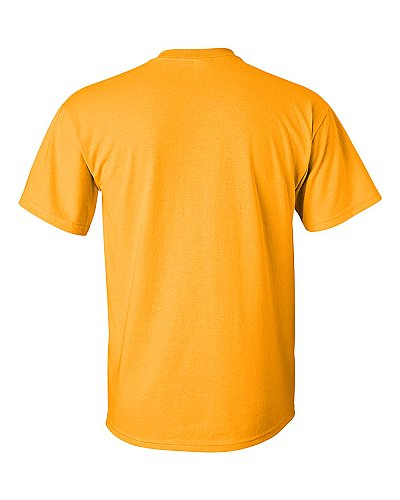Gildan Ultra Cotton 6.1 Cotton Tee